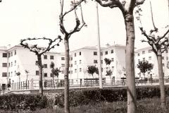 Viviendas Ntra. Sra. Misericordia, 1964. @Archivo de Salva G.