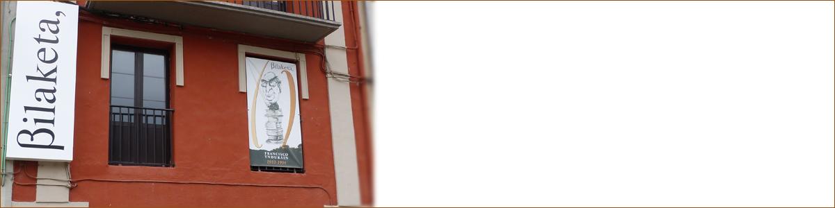 bilaketa-amigos-banner
